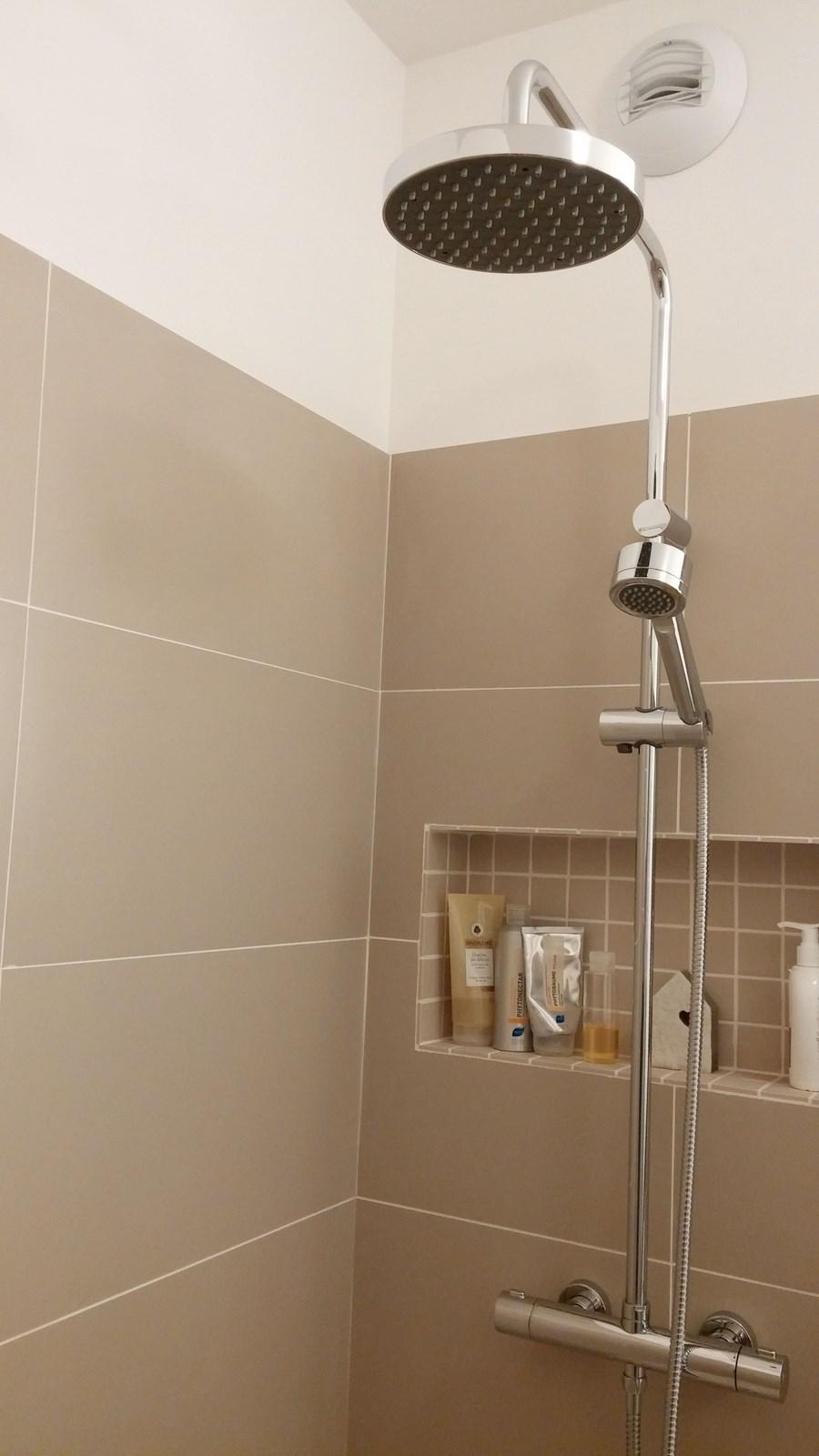 sdb asni res niche dans la douche. Black Bedroom Furniture Sets. Home Design Ideas